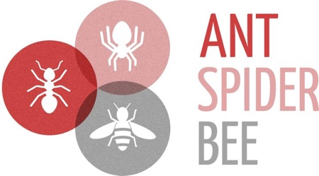Ant Spider Bee